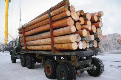 Строительство зимника в Архангельской области